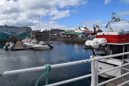 Most of the sightseeing tours leave from the Old Harbour - whale watching, puffin tours, sea angling, a ride in a Viking ship and our ferry to Videy.