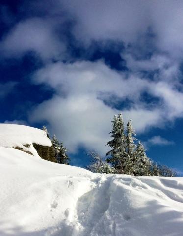 The Saranac Lake 6 – Steph the Wayward Pilgrim