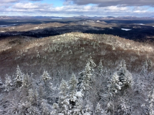 One of the stunning views from the fire tower.