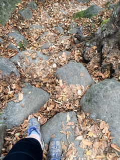 These conveniently placed rocks make climbing Ampersand a cardio workout but make descending much easier.