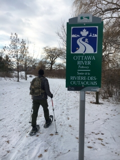 The Rideau Trail follows the Ottawa River Pathway (which is also the Trans Canada Trail) for almost 15 km, from the Ottawa Locks to where the path crosses Carling Avenue.