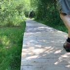 The Rideau Trail, Map 18